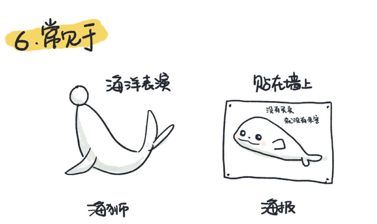 海狮常见于海洋表演,海报常贴在墙上